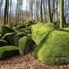 Naturbesonderheiten im Rhein-Main-Gebiet